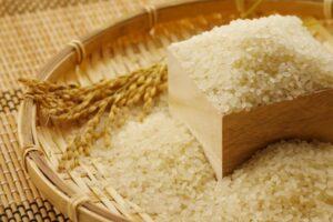 九州産,美味しい,米,つやつや,楽天市場,お得,安い,ポイント,SPU